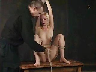 Insex slave
